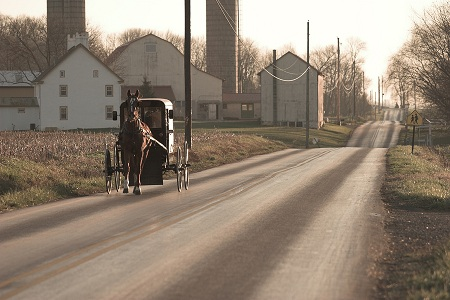 bigstock-Amish-horse-and-buggy-Chester-18523754