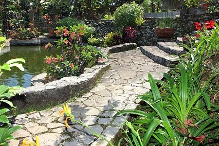 bigstock-Beautiful-natural-garden-with--25131482