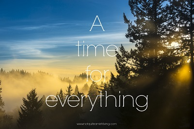 A Time For Everything - Sunpic