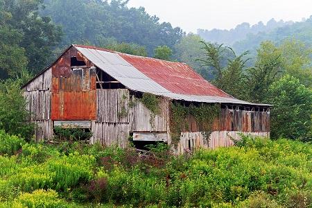 Foggy Morning Barn