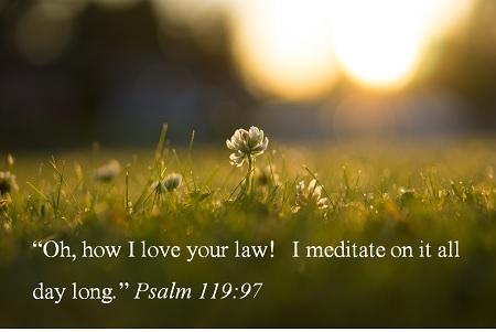 psalm 119-97