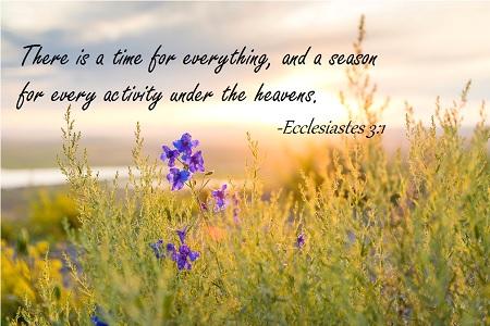 Ecclesiastes 3-1