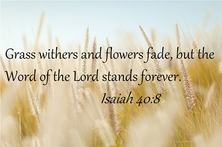 Isaiah 40-8