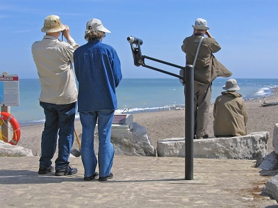 Bird Watchers