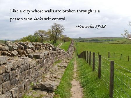 Proverbs 25-28