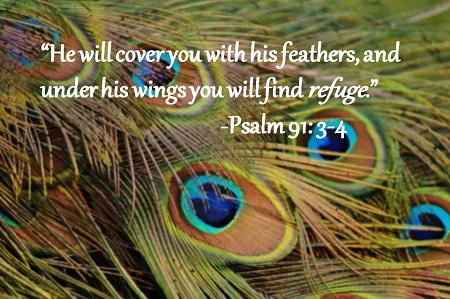Psalm 91 34