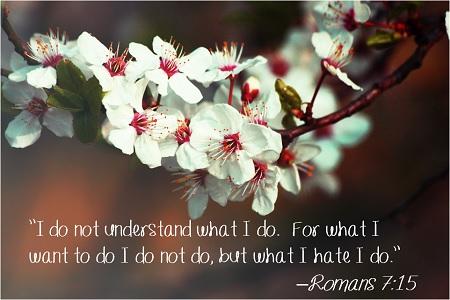 Romans 7-15